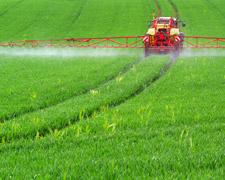 Krebserreger Glyphosat: EU-Kommission will Glyphosat-Zulassung verlängern