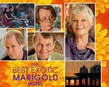 Unser Kinotipp für April: Best Exotic Marigold Hotel 2