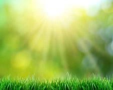 Die Wirkung der Sonne
